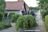 image ds_eb-2014-maienschlagen-73-jpg